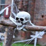 Ontdek de duistere geschiedenis van de Druïdenburcht